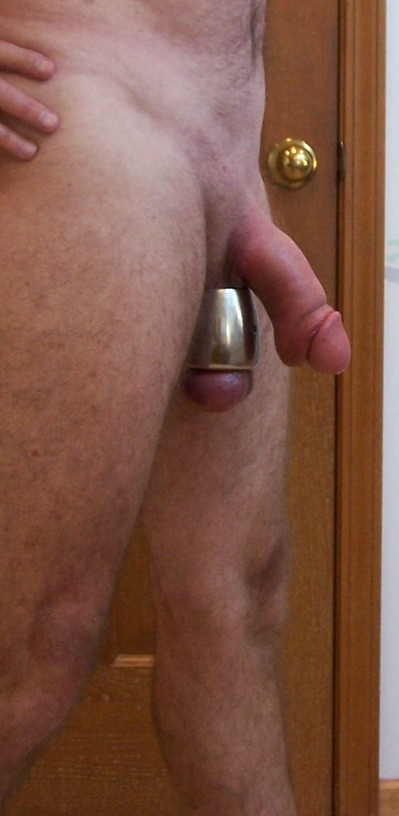 Lace up ball stretcher cock