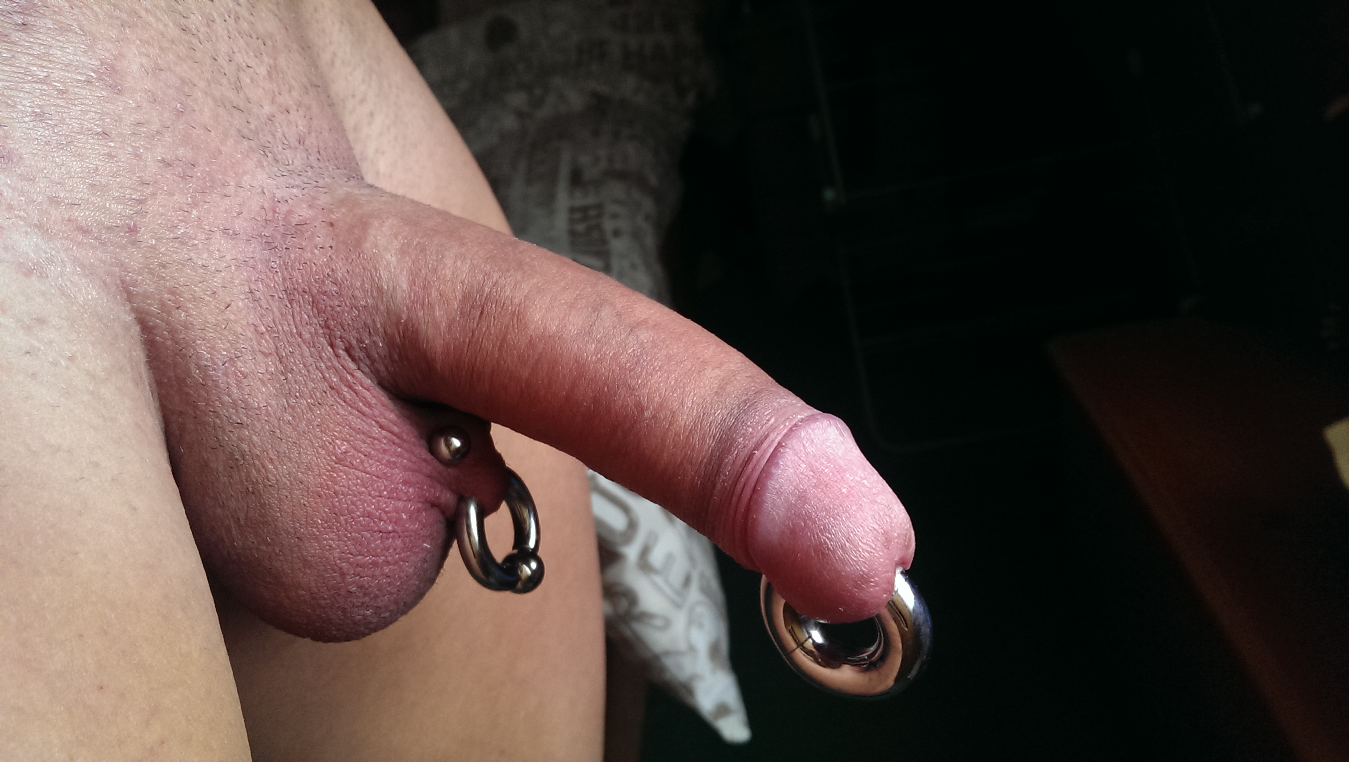 cock-and-ball-piercing