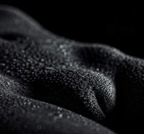 pola in black rain