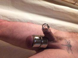 WMC and Penis Spline